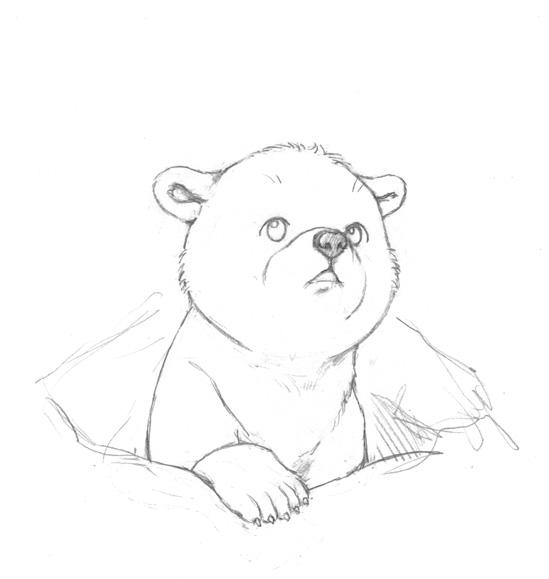 Cute polar bear drawings - photo#22