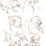 Daily_Animal_Sketch_071c