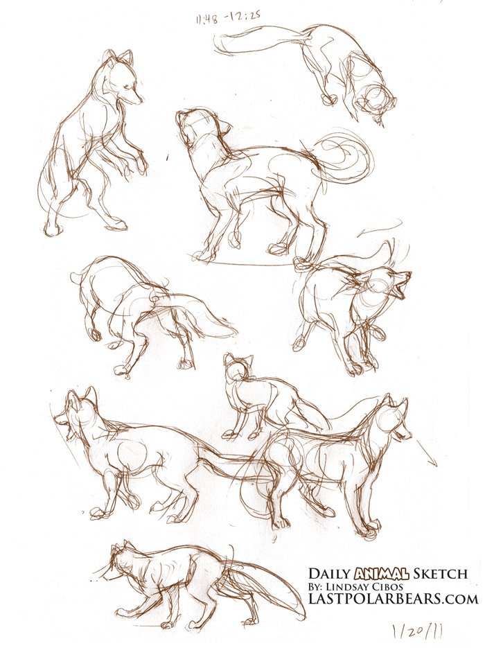 how to draw a horse running step by step