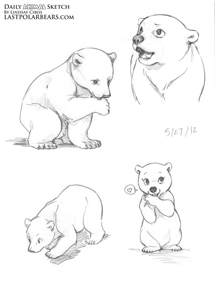 Grizzly bear cubs drawing - photo#12