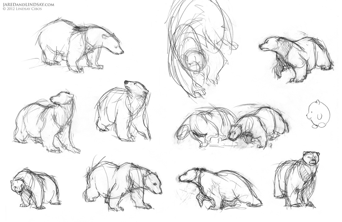 Uncategorized How To Draw Polar Bears how to draw a polar bear last of the bears step 1 brainstorm poses start by sketching some thumbnail for your bear