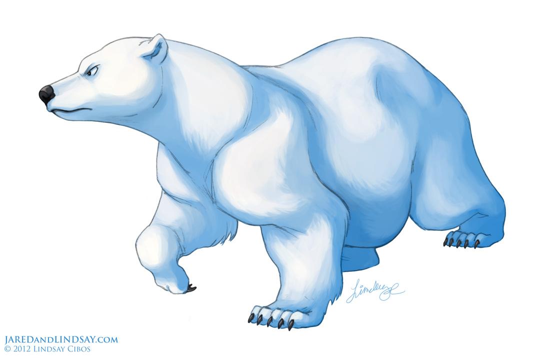 how to draw a polar bear u2013 last of the polar bears