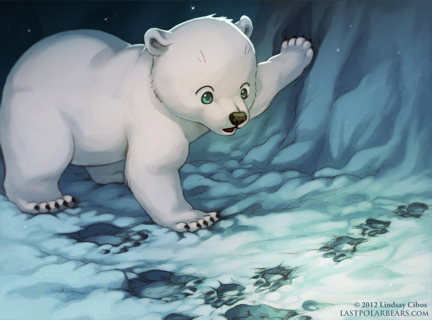 weird paw prints u2013 last of the polar bears