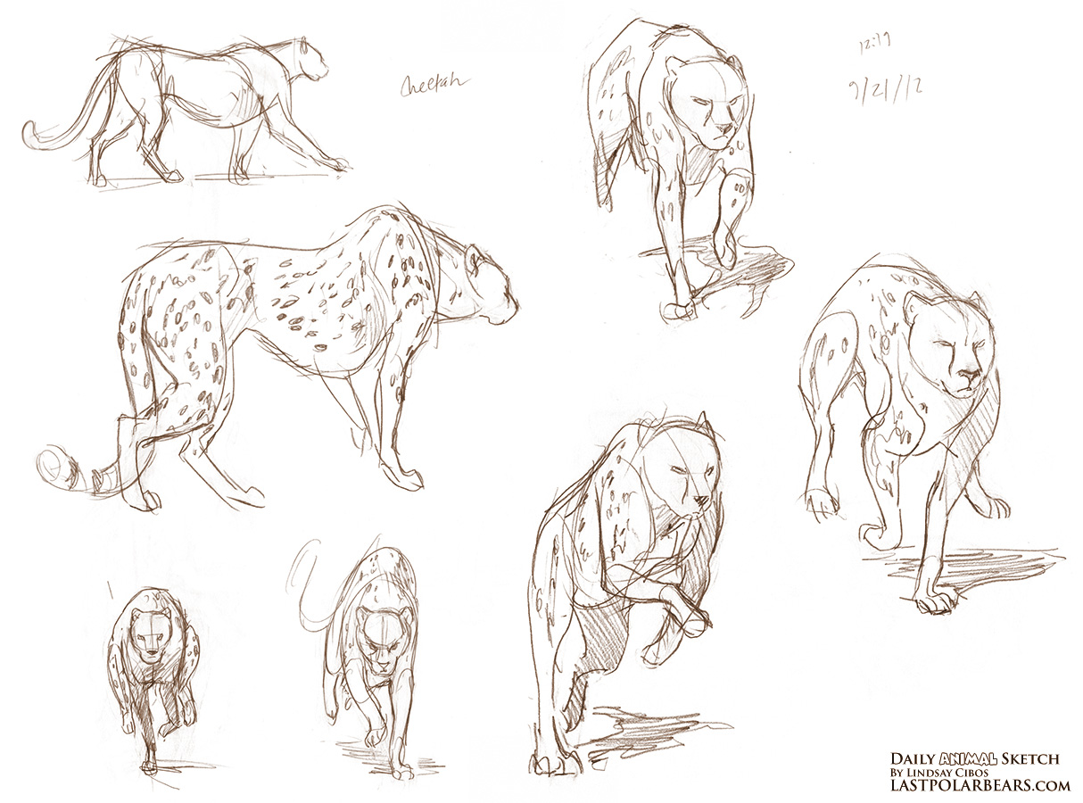 Daily_Animal_Sketch_117