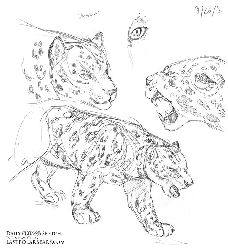 Daily_Animal_Sketch_121