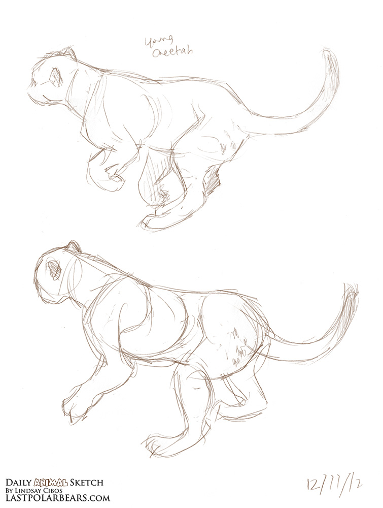 Daily_Animal_Sketch_139