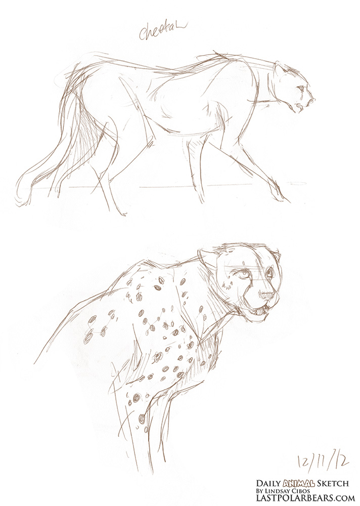Daily_Animal_Sketch_140