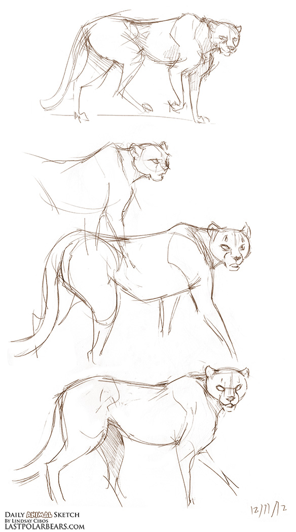 Daily_Animal_Sketch_142