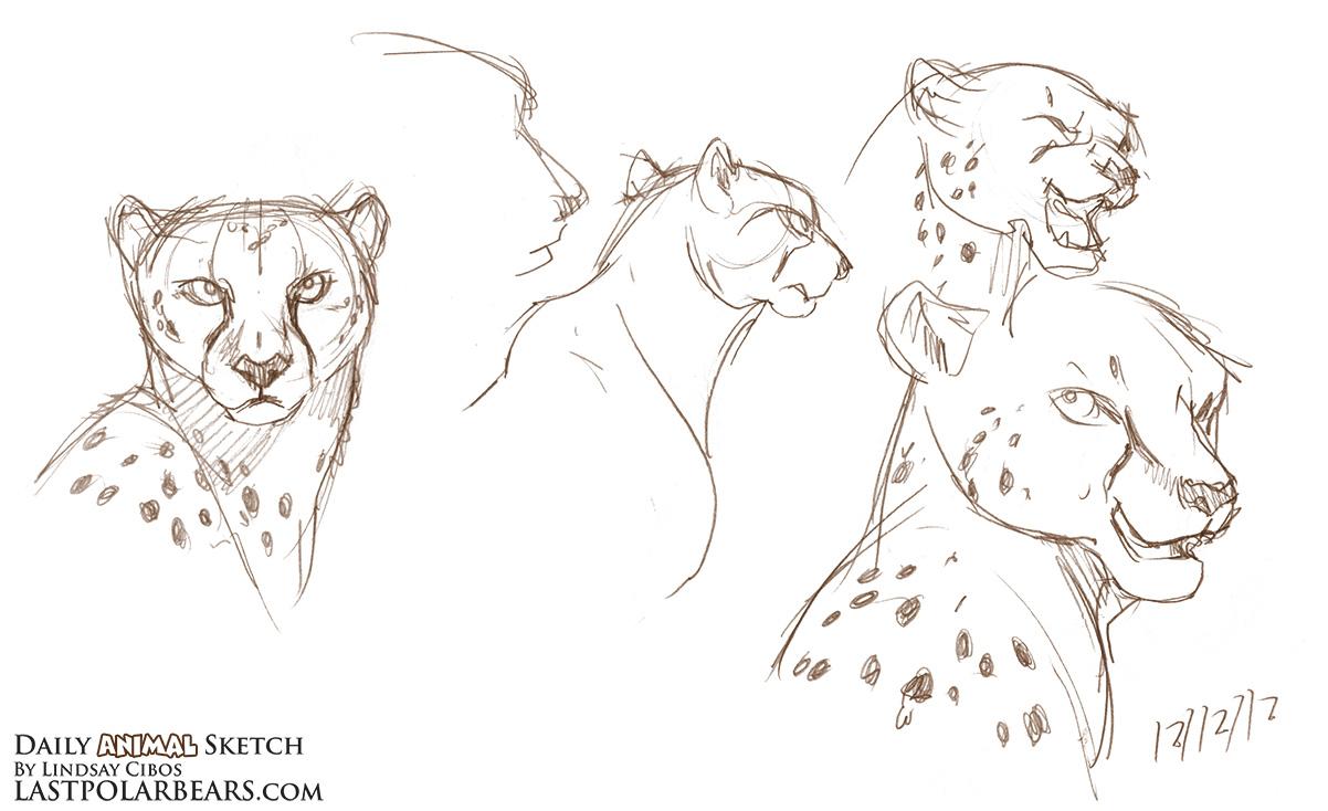 Daily_Animal_Sketch_143