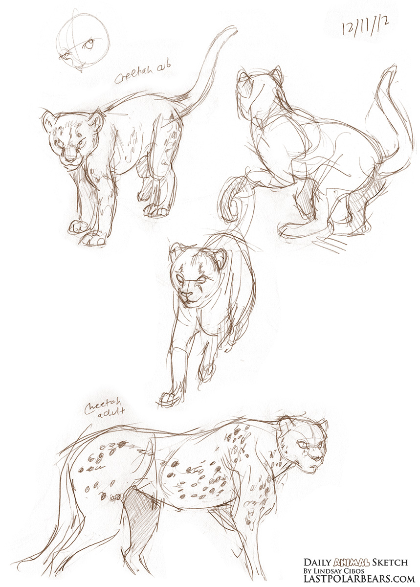 Daily_Animal_Sketch_145